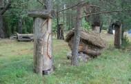 Musteika - Drevinės bitininkystės ekspozicija ir drevinės bitininkystės takas