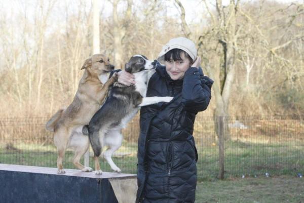 """Prasidėjo paramos beglobiams gyvūnams akcija """"Gera daryti gera"""""""